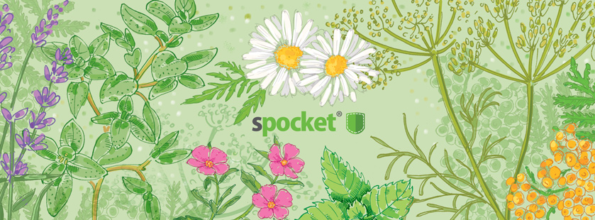 spring_19_839_4